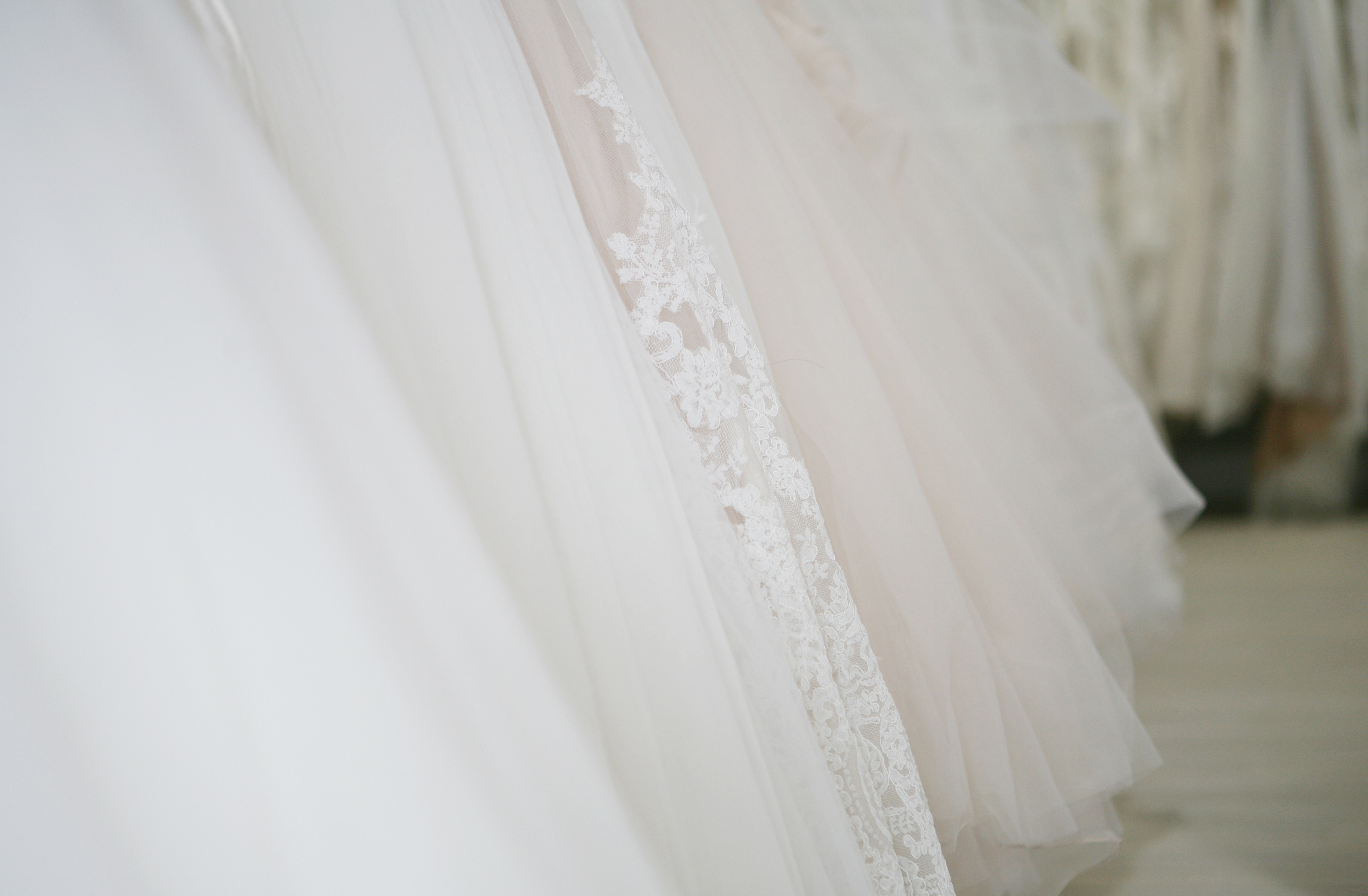 Make an appointment with a Charleston, SC bridal dress expert ...